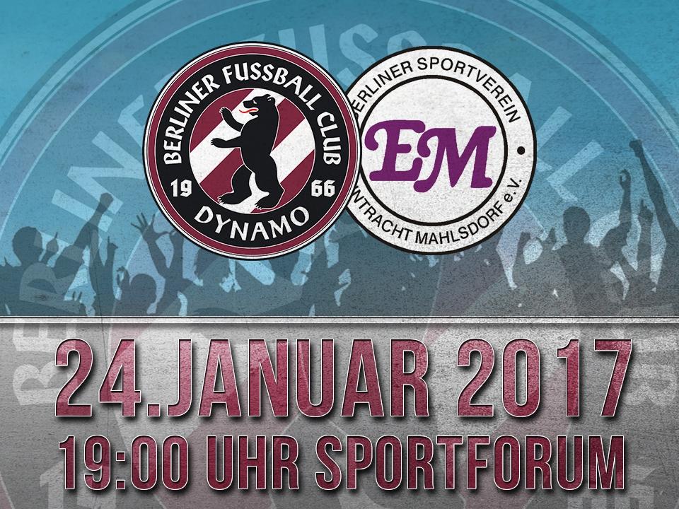 Dienstag 24.1.2017 - 19:00 Uhr  BFC DYNAMO - Eintracht Mahlsdorf