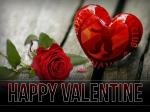 BFC DYNAMO: (M)eine Liebeserklärung