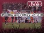 Stellungnahme - Regionalligaspiel beim SV Babelsberg