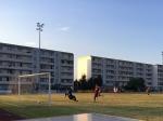 7:1-Testspielsieg beim Oberligisten SV Victoria Seelow