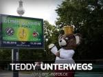 DFB-Pokal: Teddy startet zweite Welle der Werbekampagne